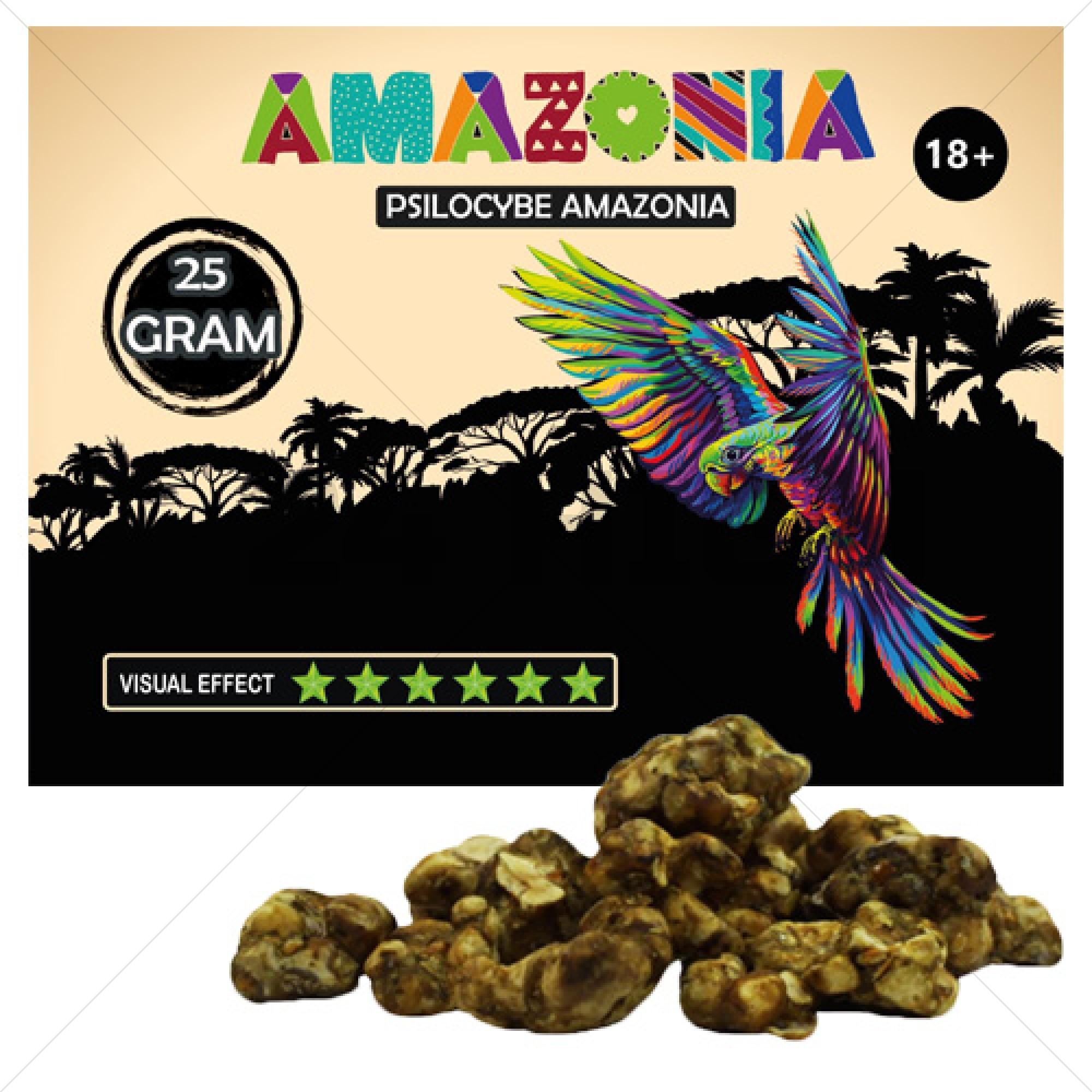 Psilocybe Amazonia Truffels