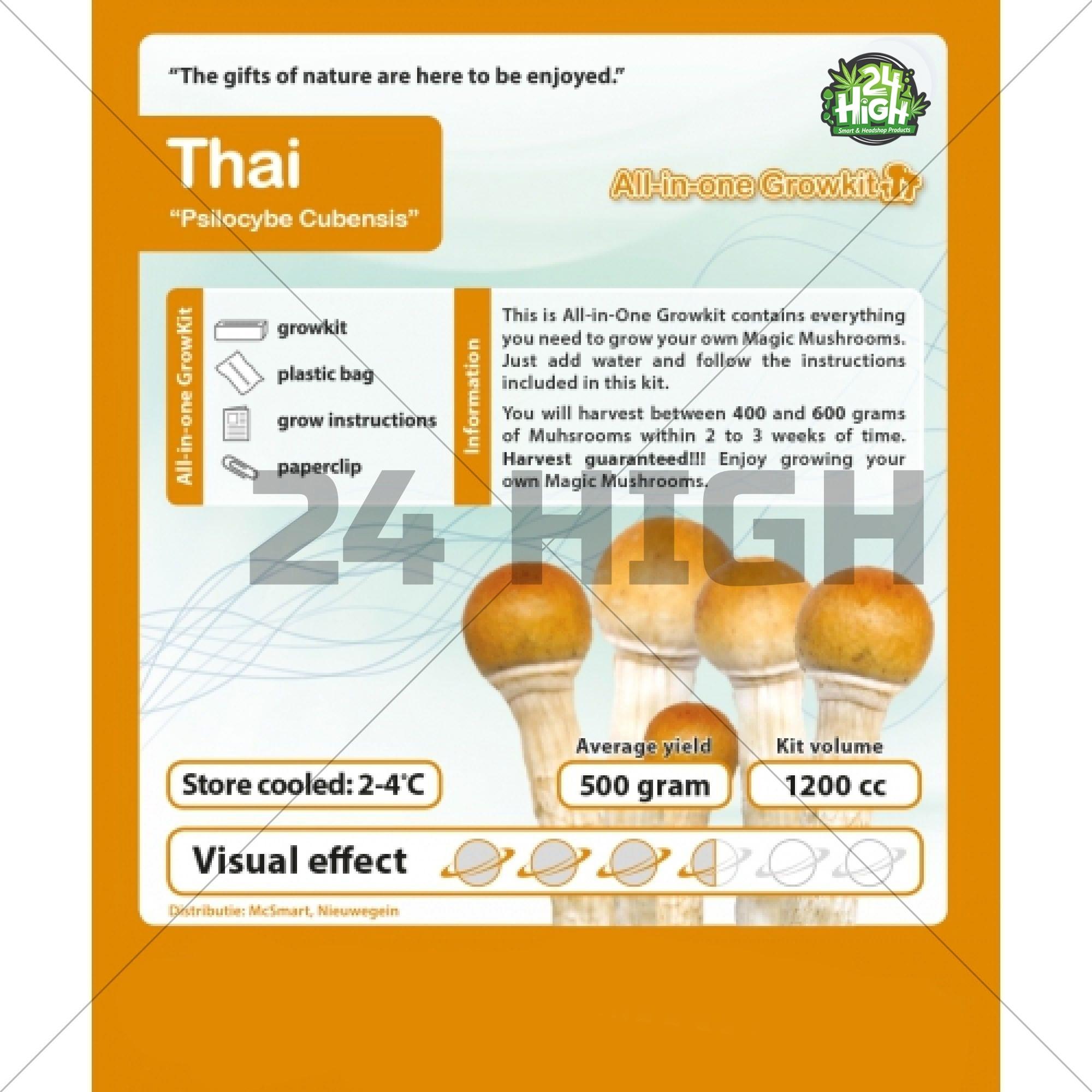 Thailandés Kit de Cultivo de Setas