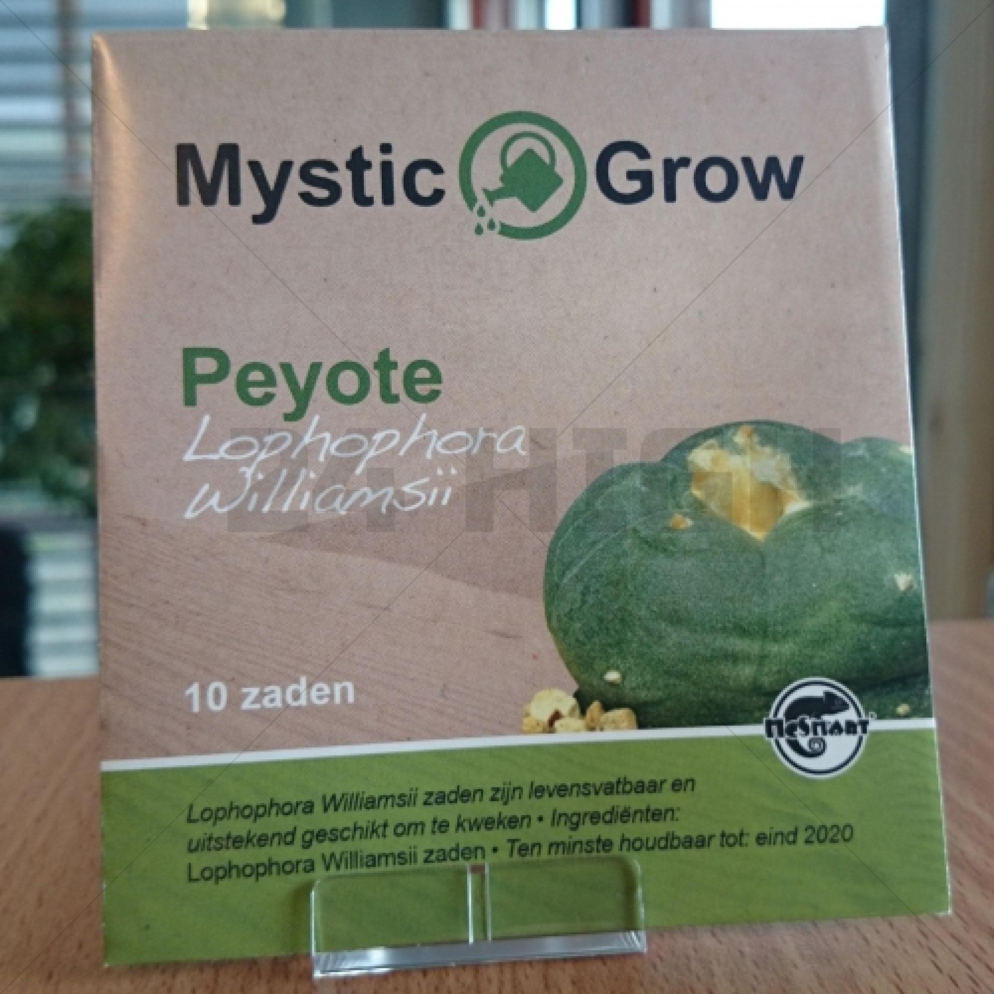 Peyote zaden                      (Lophophora Williamsii)