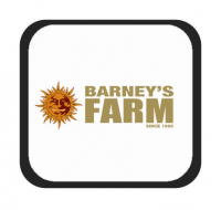 Brands - Barney